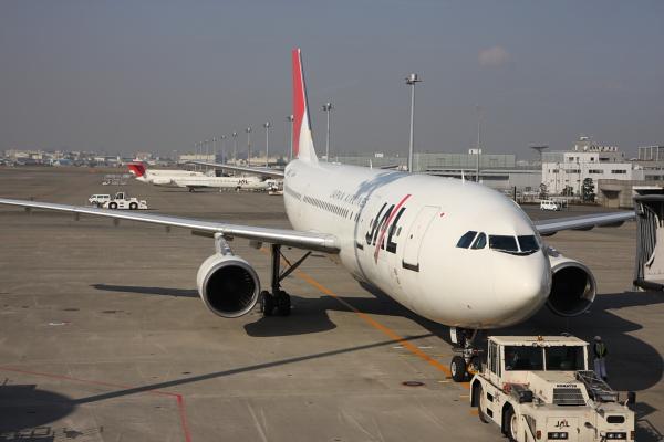 這就是我們準備要搭的飛機